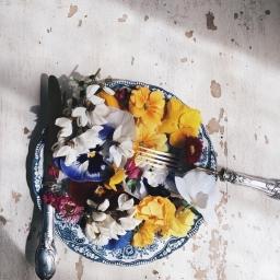 I fiori eduli (e non solo)
